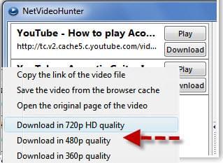 netvideohunter video downloader 1.9.1