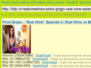 Blip episode downloader